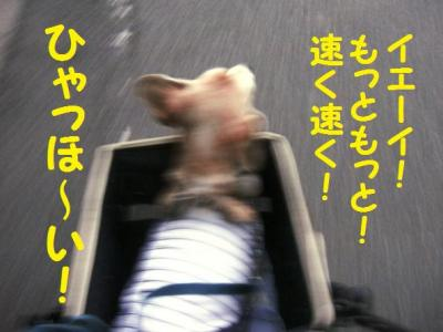 経過 6 走れ~!
