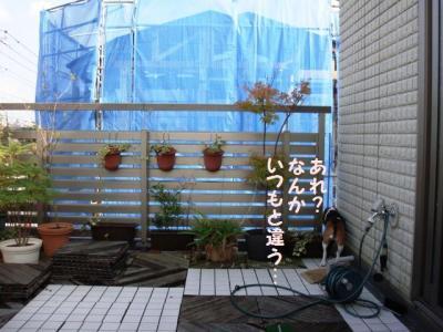 マ 4 屋上庭園