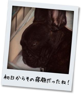 photokako125336591245280.jpg