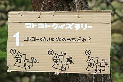 kotokoto6-quiz-1-250.jpg