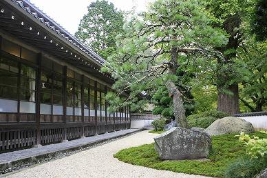 kotokoto6-shiunkaku-2-388.jpg