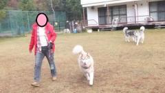 027_20111022155127.jpg
