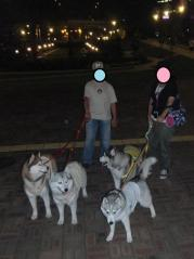 052_20110705221138.jpg