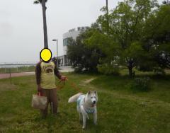 111_20110517221339.jpg