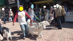 148_20111024213247.jpg