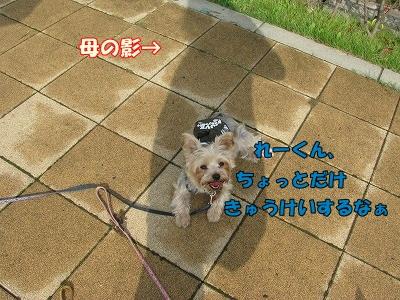 IMG_0814_20101006223623.jpg