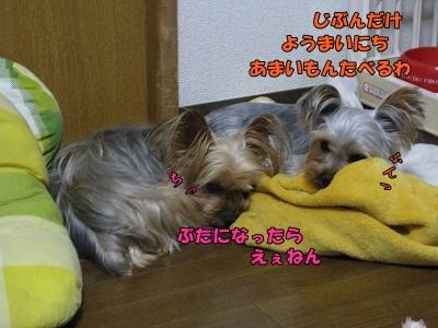 IMG_0841(1).jpg