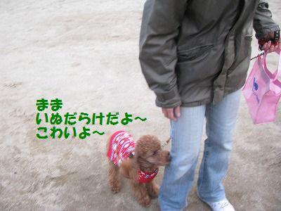 IMG_0884.jpg
