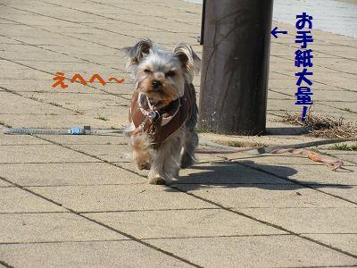 IMG_1230.jpg