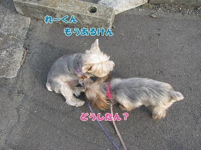 IMG_1560_20111014235445.jpg