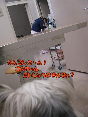 IMG_2919_1.jpg