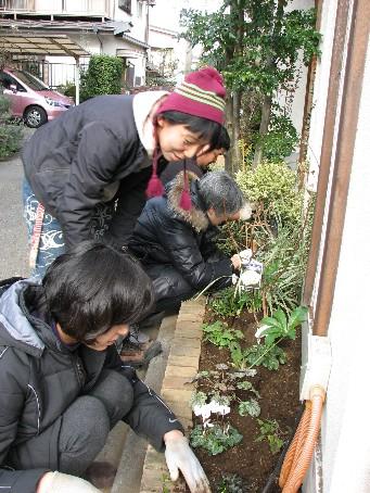 Oさんの庭2009_12#4