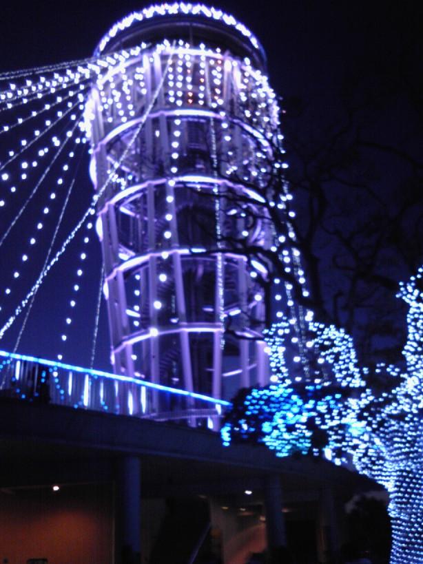 江の島2009_12#5