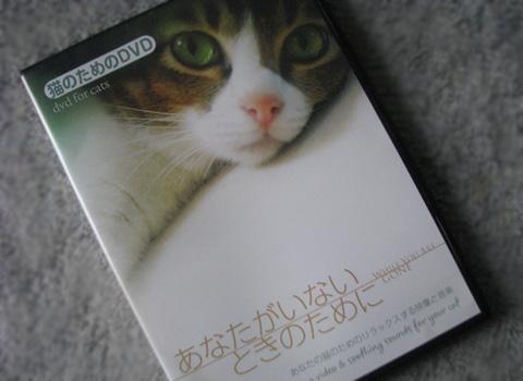 015_Rのコピー