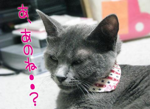 054_Rのコピー