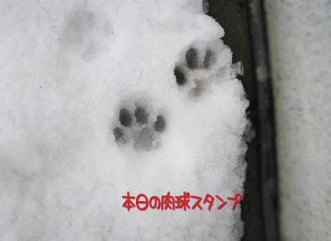 014_Rのコピー