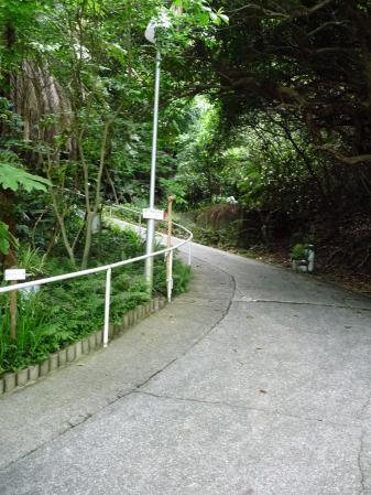 南方熊楠記念館03~入り口前の坂道 03