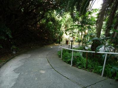 南方熊楠記念館05~入り口前の坂道4