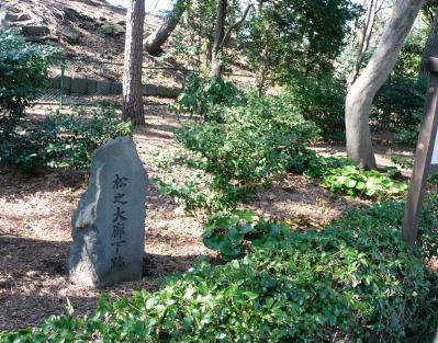 2010.2.20-東京ぶらりひとり旅005~東御苑019~「松の大廊下」