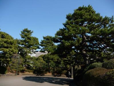 2010.2.20-東京ぶらりひとり旅005~東御苑034~平川門へ