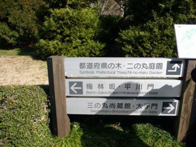 2010.2.20-東京ぶらりひとり旅005~東御苑035~都道府県の木01