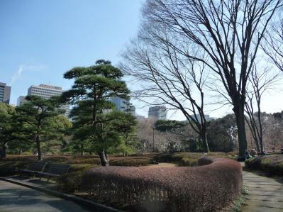 2010.2.20-東京ぶらりひとり旅005~東御苑036~二の丸雑木林01