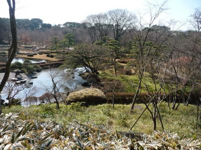 2010.2.20-東京ぶらりひとり旅005~東御苑036~二の丸雑木林05