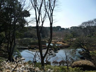 2010.2.20-東京ぶらりひとり旅005~東御苑036~二の丸雑木林07