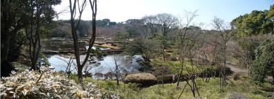 2010.2.20-東京ぶらりひとり旅005~東御苑036~二の丸雑木林08