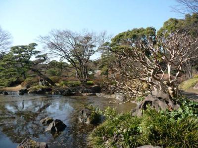 2010.2.20-東京ぶらりひとり旅005~東御苑036~二の丸雑木林10