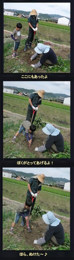 いもほり2010秋-05