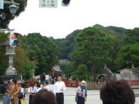 八幡宮遠景