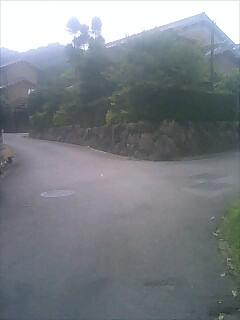 右が柳生街道