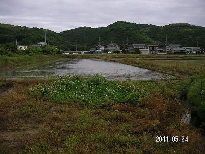 5月22日大雨2