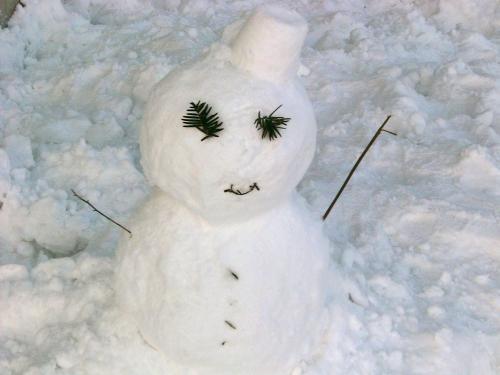 2011:1:1雪だるま