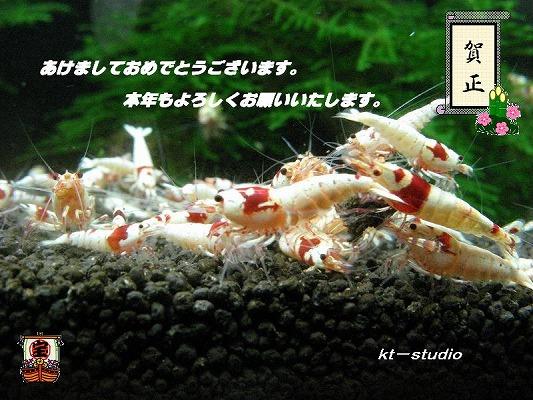 IMG_86212.jpg