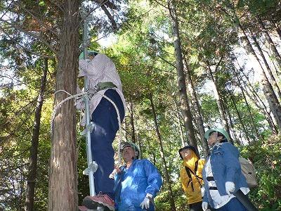 07枝打ちははしごに登って