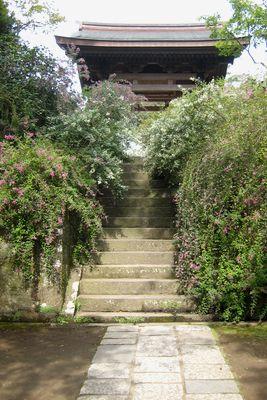 海蔵寺~萩。