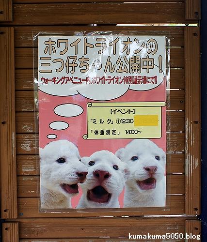 姫路セントラルパーク_8
