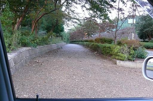 木場潟通り沿い