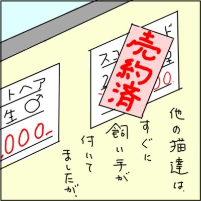 20111024-3.jpg