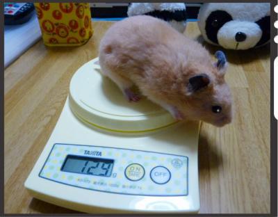 日記9・29体重2