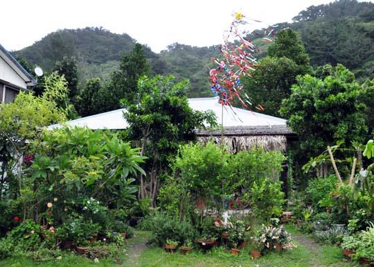 20110806 tanabata01