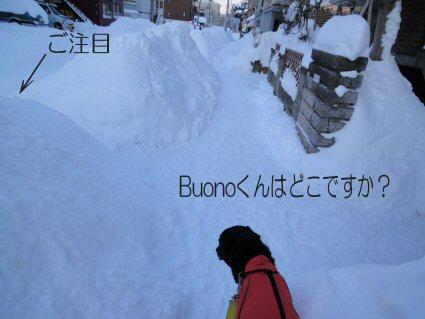 DSC201101137.jpg