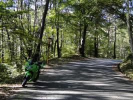 鷹狩山への道中