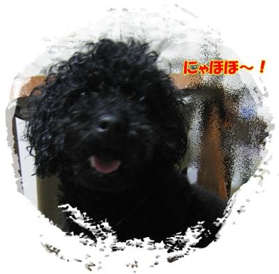 001_20090807182728.jpg
