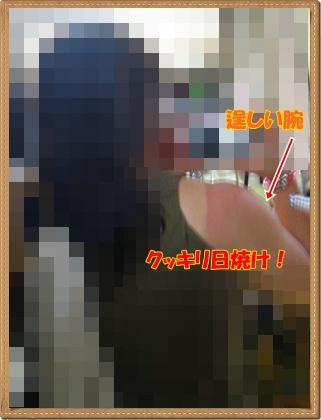 005_20090827134457.jpg