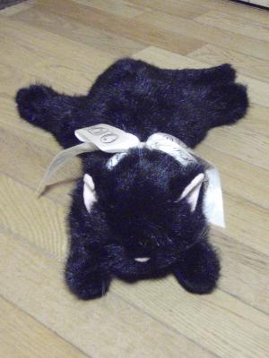黒猫さん1