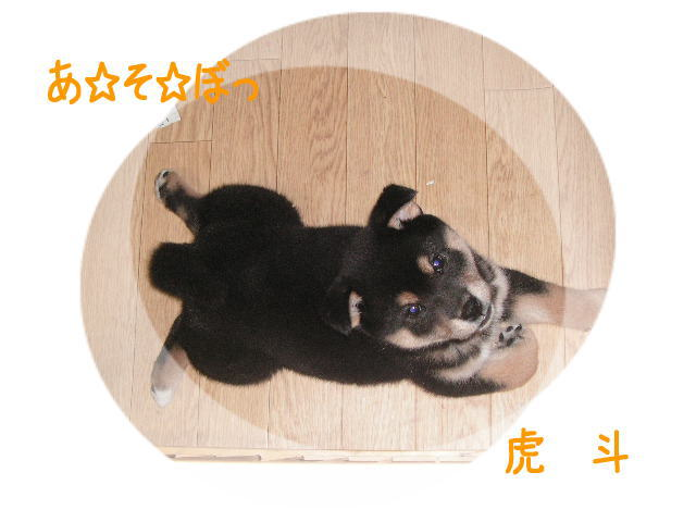 じぃぃ~~3