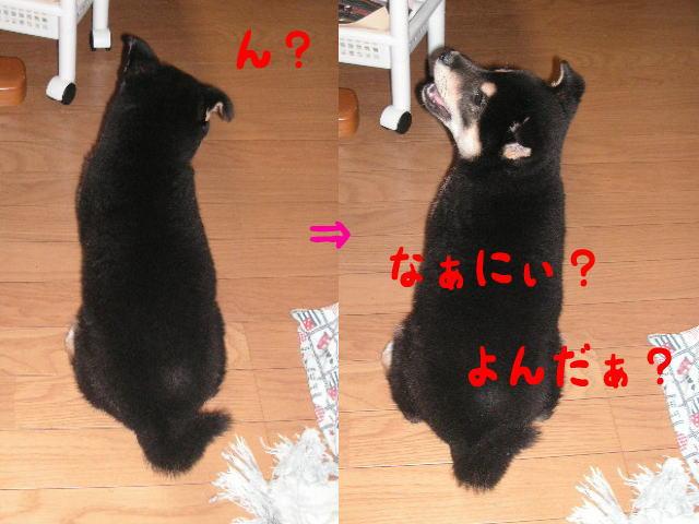 なぁ~にぃ??